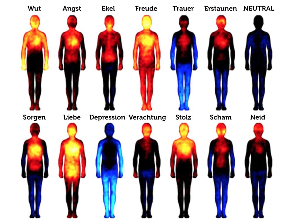 Grafik Bauchgefühl